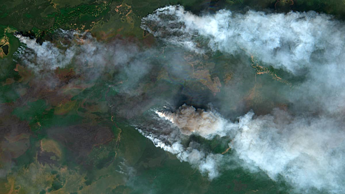 Landscape fires in Western Siberia